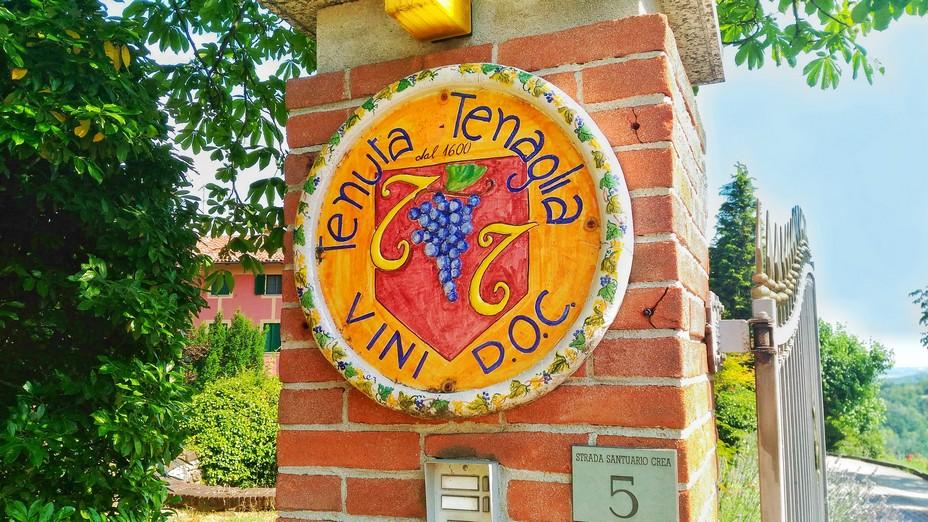Vini del Monferrato Casalese