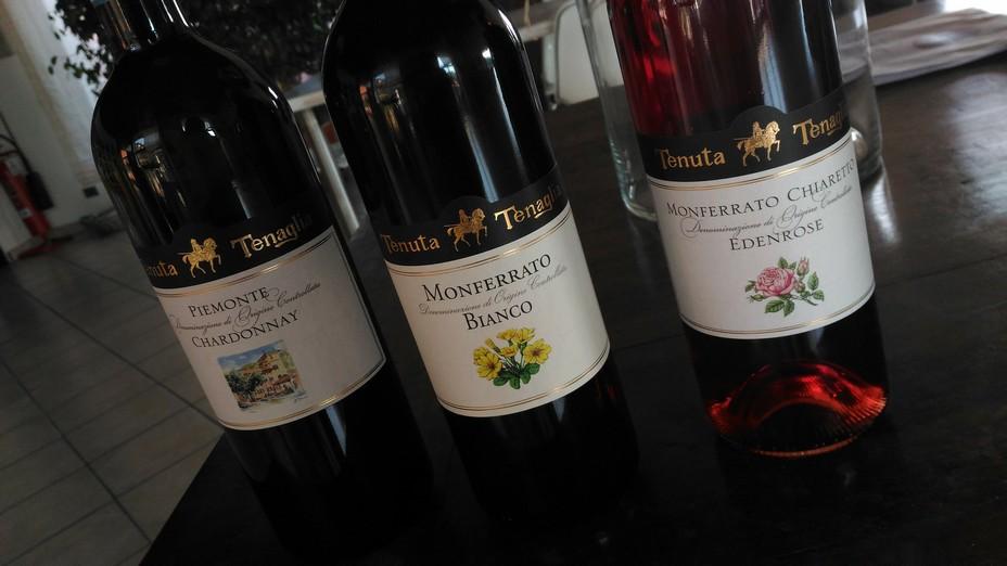 Monferrato Bianco Doc, Tenuta Tenaglia, vini del Casalese